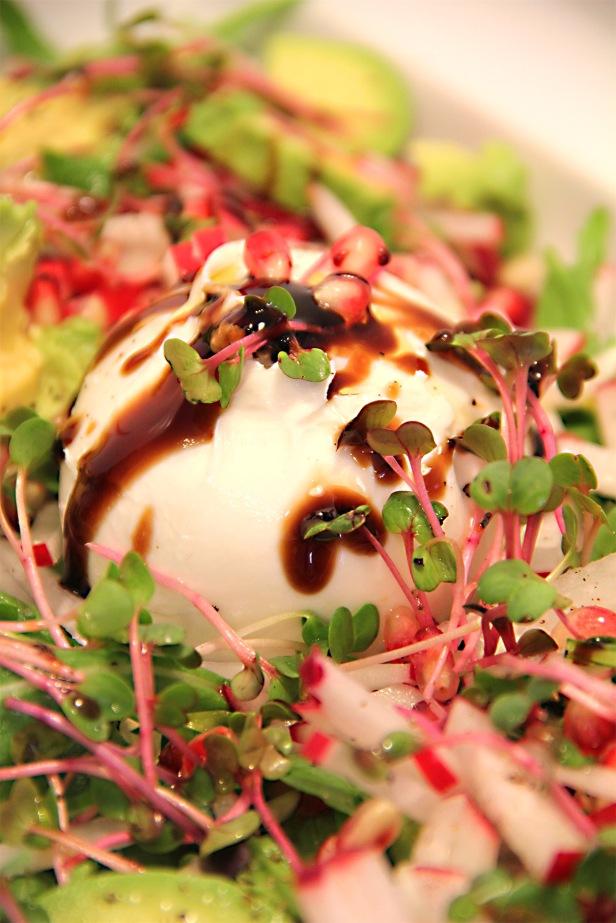 Exotic Burrata salad