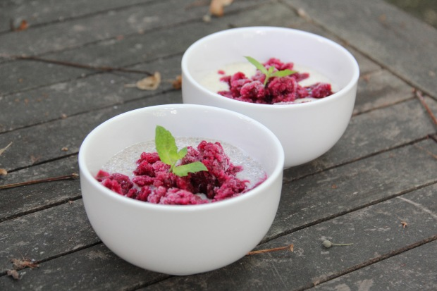 Coconut Pudding with Blueberry Granita