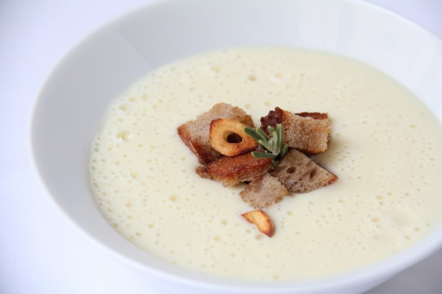 Warming Parmesan Cream Soup